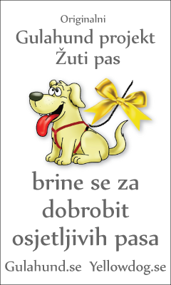 banner-gulahundyellowdog-croatia