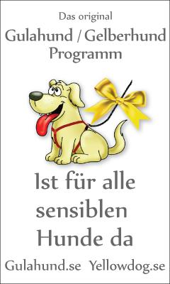 banner-gulahundyellowdog-german-schweitz--240x400pxl