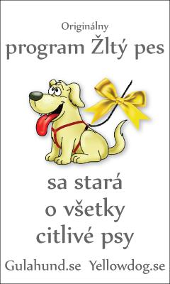 banner-gulahundyellowdog-slovak--240x400pxl