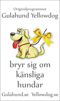 banner-gulahundyellowdog_swedish_240x400pxl