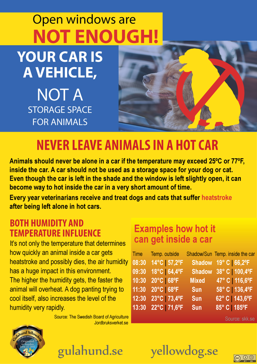 Never leave animals in a hot vehicle