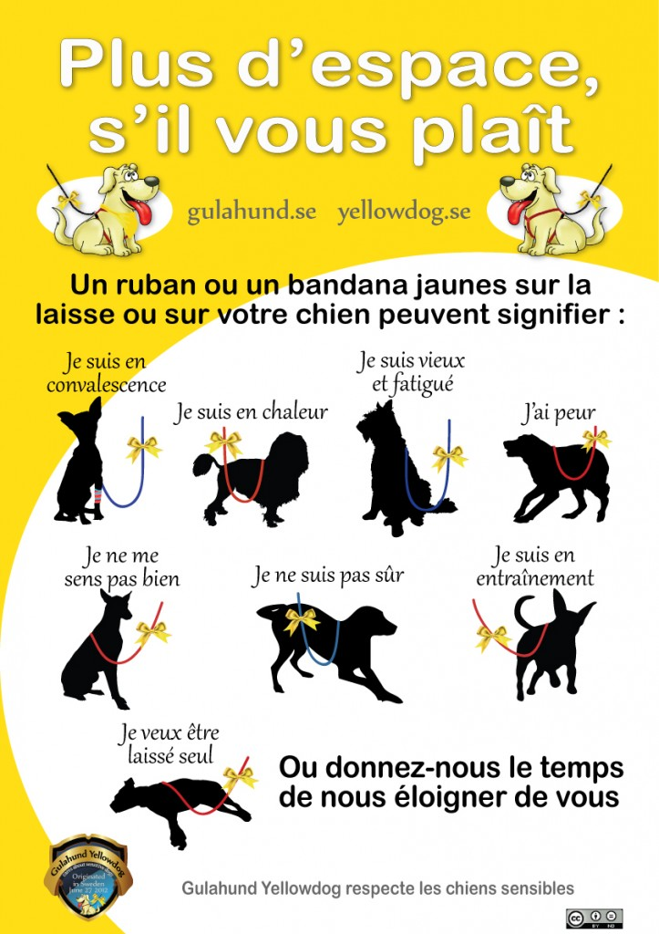 gulahundyellowdog-poster-french